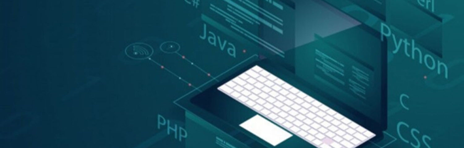 What To Look For In Web Development Services
